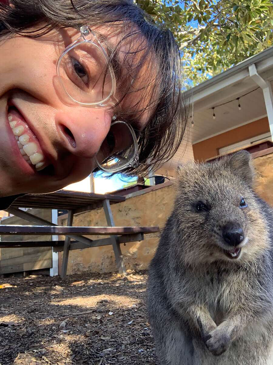 best-things-to-do-in-perth-quokkas-selfie-rottnest-island